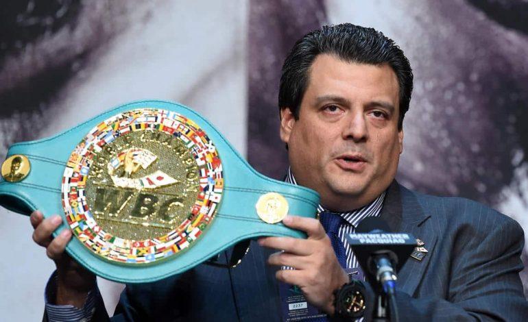 CMB se opone a los boxeadores profesionales en JO