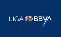 Liga MX recibe solicitud oficial para cambio de sede de Monarcas